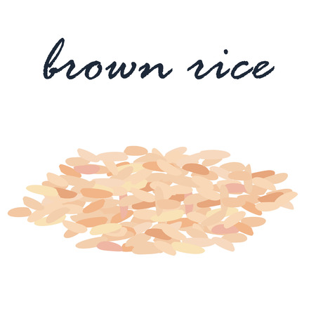 rice grain: brown rice organic grain vector illustration