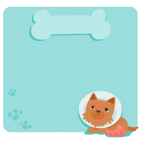 Pity terrier dog at empty board vector illustration