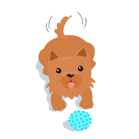 yorkshire terrier: Happy Yorkshire Terrier dog want to play a ball illustration Illustration