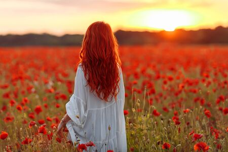Redhead happy woman in white dress on field of poppies at warm summer sunset Banque d'images
