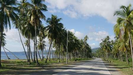 Scenic coastal roads of Davao Oriental, Philippines The paved roads are bordered by towering coconut trees