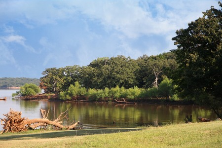 Scenic cove in a lakeside with lush vegetation and greenery  on a bright day