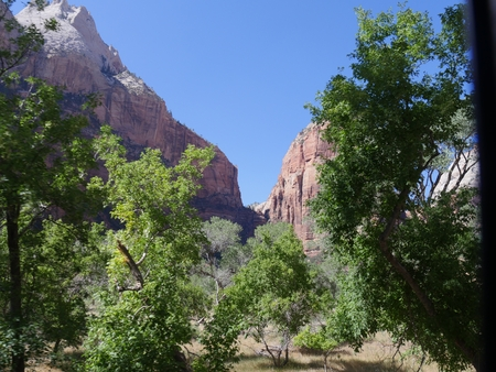 Sandstone cliffs framed by trees in the foreground at Zion National Park, Utah. 写真素材
