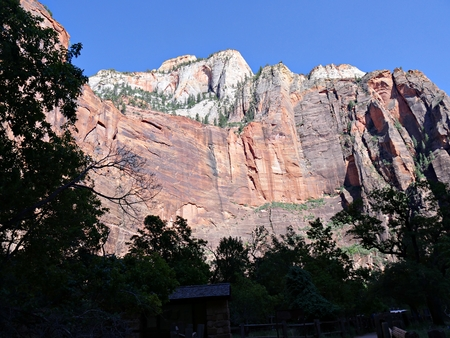 Impressive red rocky cliffs framed by the silhouettes of treetops late in the afternoon at Zion National Park, Utah.