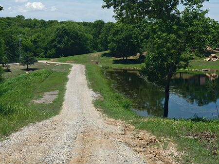 Rugged road with a pool of water by the roadside at Chickasaw National Recreation Area in Davis, Oklahoma