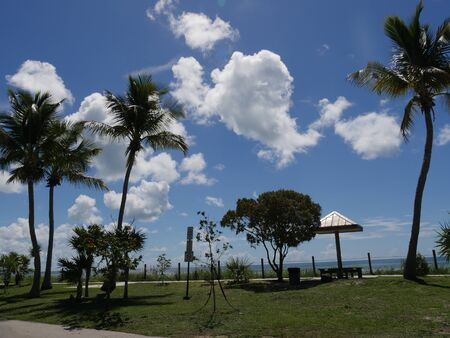 Coconut trees and open cottage along the coastal view of S Roosevelt Boulevard, Key West, Florida.