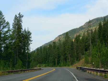 Winding road with lush green trees at Yellowstone National Park in Wyoming. Stock Photo