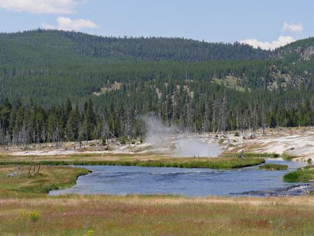 Wide scenic view of the Upper Geyser Basin view with steam rising from geysers at Yellowstone National Park, Wyoming.