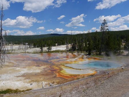 Celestine Pool at Lower Geyser Basin, with clear skies at Yellowstone National Park, Wyoming.