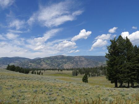 Scenic view of the Hayden Valley at Yellowstone National Park with gorgeous clouds in the skies.