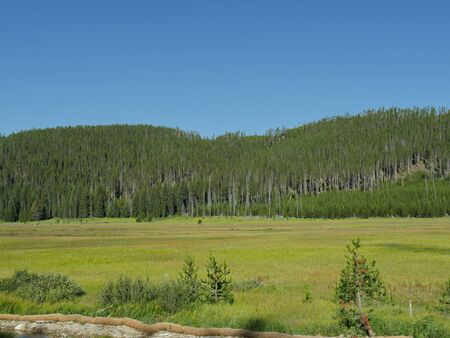 Medium wide shot of Hayden Valley at Yellowstone National Park, Wyoming
