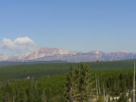 Scenic views of mountains and forests at Yellowstone National Park in Wyoming.