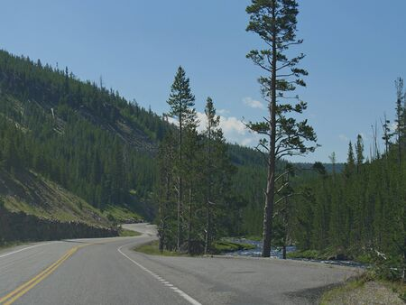 Scenic winding road at Yellowstone National Park in Wyoming, with the Yellowstone River flowing along the road.