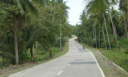 Governor Generoso, Davao Oriental, Philippines-March 2016: Winding road bordered by coconut trees, with a man in a motorcycle on the road.