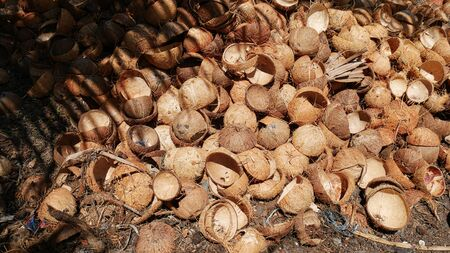 Medium close up shot of a pile of coconut shells on the ground being prepared for processing into charcoal in the Philippines.
