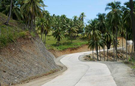 Winding road along coconut plantations in Governor Generoso, Davao Oriental, Philippines.