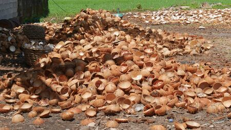 Pile of coconut shells on the ground being prepared for processing into charcoal in the Philippines. 스톡 콘텐츠