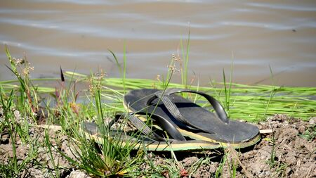 A pair of big black slippers left in a muddy ground of a ricefield. 스톡 콘텐츠
