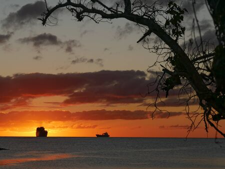Magnificient sunset with the silhouettes of a tree and ships in the background Archivio Fotografico