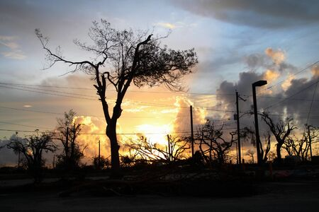 Phenomenal sunset with gnarled trees in the wake of a hurricane in Saipan, Northern Mariana Islands