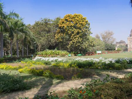 New Delhi, India- March 2018: Colorful flowers at the Lodi Garden, one of the top attractions in New Delhi. Stockfoto