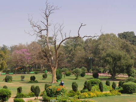 New Delhi, India- March 2018:  Landscape with flowers and trees at the Lhodi Gardens, one of the famous parks in New Delhi.