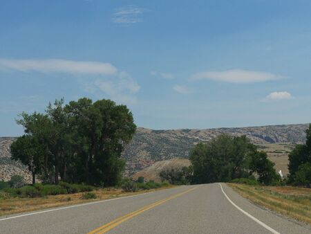Wide shot of winding paved road bordered by trees, Wyoming landscape.