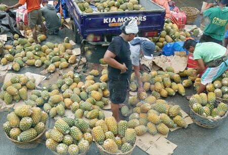 Tagum City, Philippines- March 2016: Market goers picking out pineapple fruits outside the public market in Tagum City. 스톡 콘텐츠