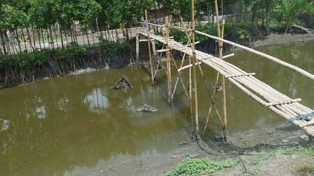 Sideview of a suspended bamboo bridge connects two sides of a ditch.