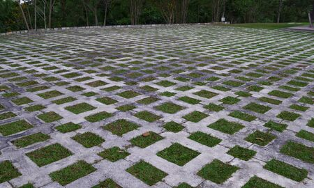 Square patterns of concrete and grass at a botanical park.