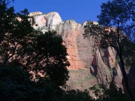 Majestic red rock cliffs bathed in the afternoon sunlight at Zion National Park, Utah. Stockfoto