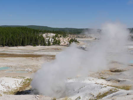 Close up of hot steam spewing out of the Black Growler Vent at the Norris Geyser, Yellowstone National Park.