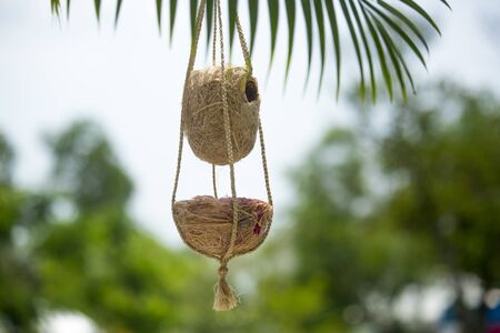 Handmade birds nest are hanging on the branches of green trees. Interior Decoration Design. Nest made of fiber.