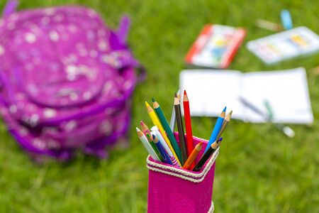 Banana Fiber-made pink pencil holder with multi-color pencils. Books, notebooks, school bags can be seen on out of focus in the grass. 版權商用圖片