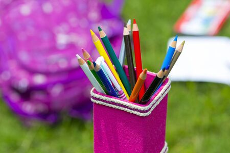 Banana Fiber-made pink pencil holder with multi-color pencils. Books, notebooks, school bags can be seen on out of focus in the grass. Stock Photo