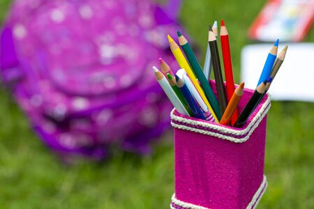 Banana Fiber-made pink pencil holder with multi-color pencils. Books, notebooks, school bags can be seen on out of focus in the grass.