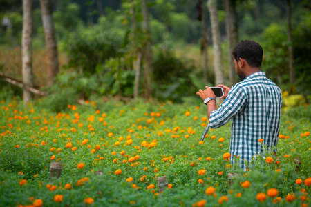 Bangladesh – October 05, 2020: A man is photographing beautiful blooms orange marigold flowers in the garden at Godkhali, Jessore District.