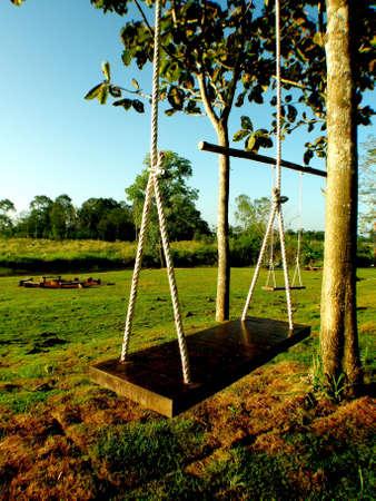folkways: Seat wild swings.