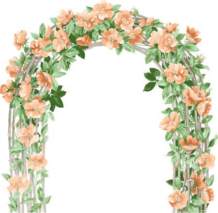 Fondo floral. Arco de flores. Los elementos de diseño de flores.
