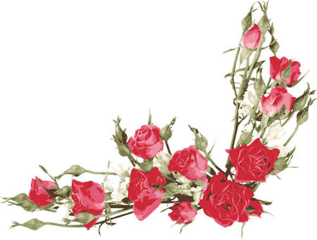 Angle vignette with red roses. Floral background and wallpapers.
