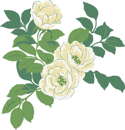Flowers white roses with green leaves. Natural pattern to design postcards.