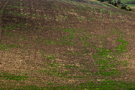 A plowed field in autumn 스톡 콘텐츠