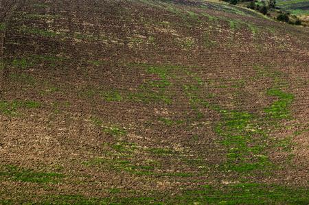 A plowed field in autumn Reklamní fotografie