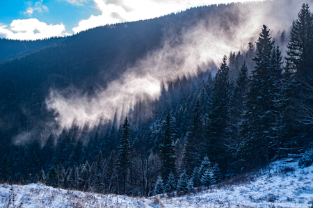 Mist rises above the forest in the Carpathians Stock Photo