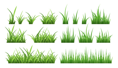 Nature illustrations of green field grass. Vector set isolate on white