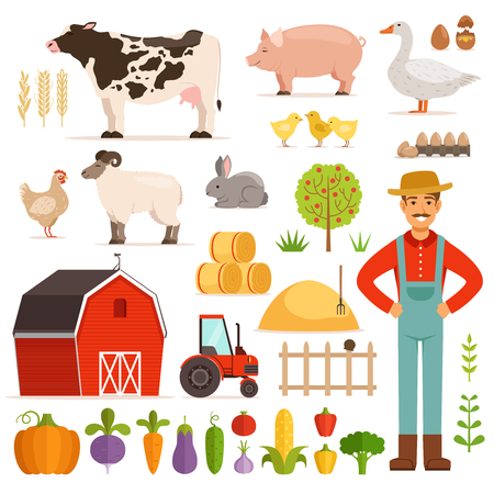 Different farm elements. Vegetables, transport and domestic animals. Vector illustrations set Çizim