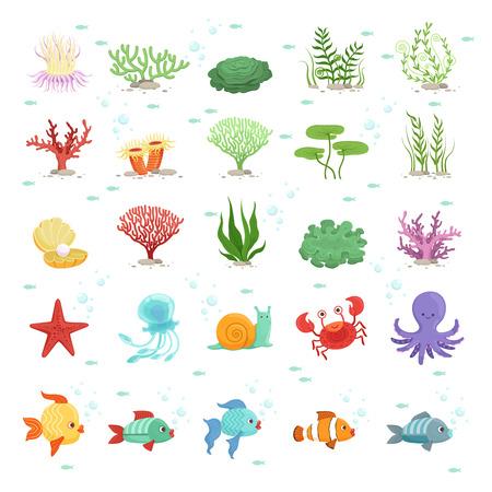 Marine animals, fishes collection and underwater plants. Aqua wild fauna. Vector illustration Ilustrace