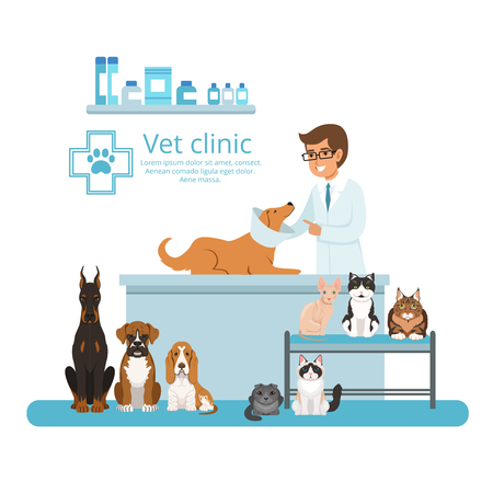 Animals in cabinet of vet hospital. Vector illustration