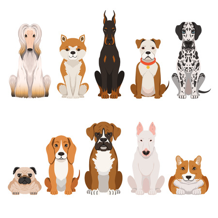 Funny dogs illustrations in cartoon style. Domestic pets Çizim