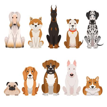 Grappige hondenillustraties in beeldverhaalstijl. Huisdieren
